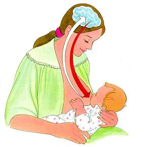 estimulacion-produccion-leche-materna.jpg